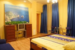 saint-petersburg-apartments-rubinshteyna-15-room